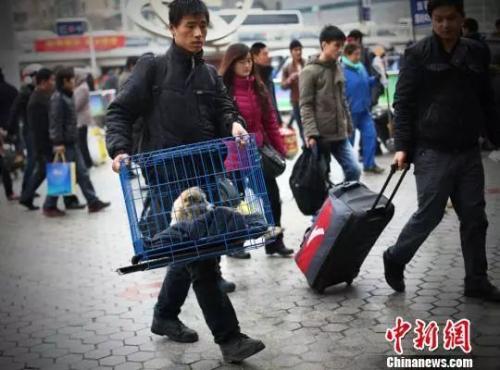 资料图:带着狗狗去乘车,吸引旅客的眼球。 泱波 摄