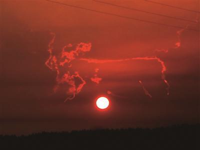 """俗话说牛气冲天。7月28日傍晩,一朵""""金牛冲天""""的云降临南京上空。当日19时左右,南京天空在一轮红日的折射下出现奇云,宛如一头奔腾的金牛浮于南京西边天空,伴着晩霞与红日,格外美丽,令人叫绝。随着太阳慢慢落山,大约经过15分种,这朵美丽的""""金牛冲天""""云才慢慢消失。"""