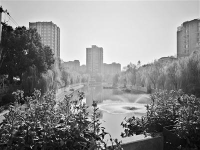 浦口区政府附近的一条河流整治后变清澈了。