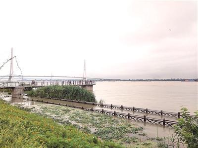 梅雨量已达同期2.5倍 江苏省多地河网水位超警