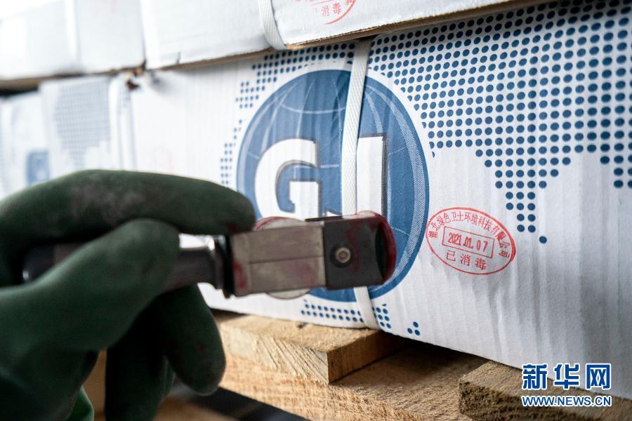 1月7日,在武汉万吨·华中冷链港,工作人员对已消毒的进口冷链食品盖章标记。