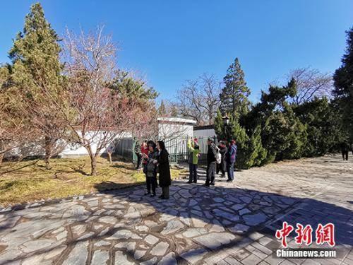 北京大观园内的游人。中新网记者 宋宇晟 摄