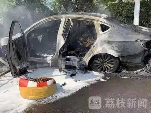 图片来源:荔枝新闻