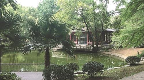 古林公园发绿的水塘