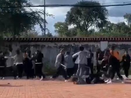 30多名女学生约架斗殴 教育局副局长被严重警告