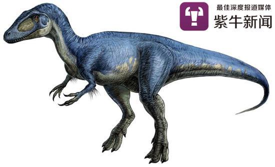 恐龙资料图
