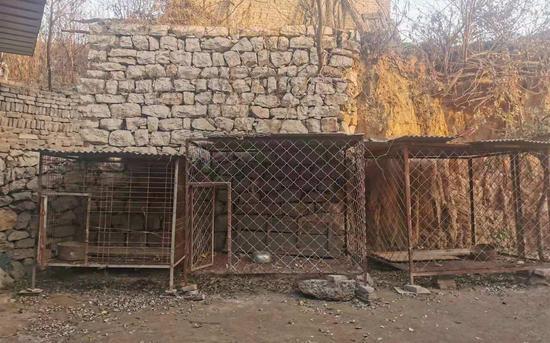 涉事犬只主人家院外的铁笼。新京报记者 寇家祥 摄