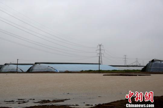 """受台风""""利奇马""""影响,""""蔬菜之乡""""山东寿光及周边县市自8月10日起普降特大暴雨,灾情较为严重。 梁犇 摄"""