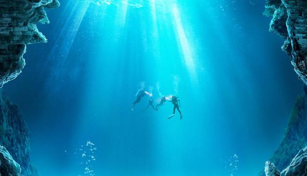 好莱坞灾难大片《鲨海逃生》定档1月10日  绝美海域暗藏鲨机