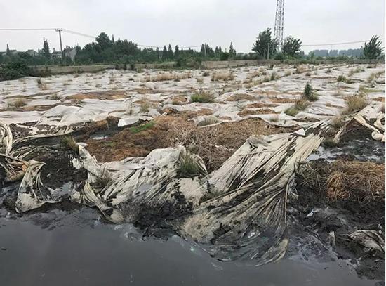 污泥堆存现场触目惊心