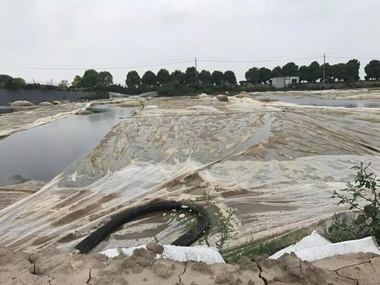 污泥池仅覆盖塑料薄膜