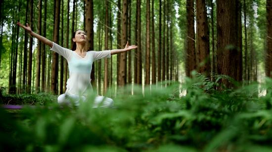 """东台黄海国家森林公园诚邀您来""""打开心扉森呼吸""""。"""
