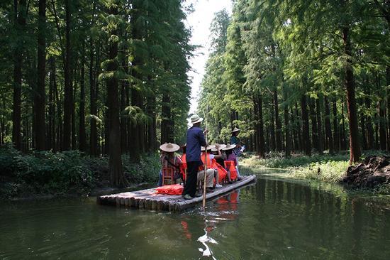 凉爽指数:★★★★    1,景点概况   李中水上森林公园位于江苏省兴化图片