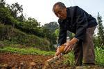 解读:养老金5.5%增幅如何确定 江苏调整原则有哪些