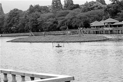 月牙湖中间的湖面上已搭起土堆,小岛初现雏形。