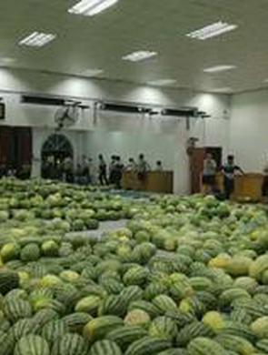 高校买30吨西瓜发给学生
