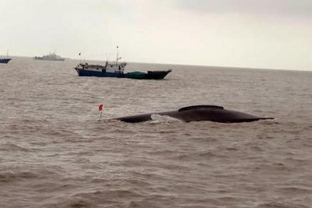 盐城海域两艘渔船相撞 5人获救1人遇难3人失踪