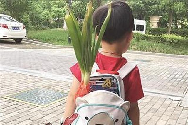 """开学第一天 中小学生""""花式""""开学亮点与创意齐飞"""