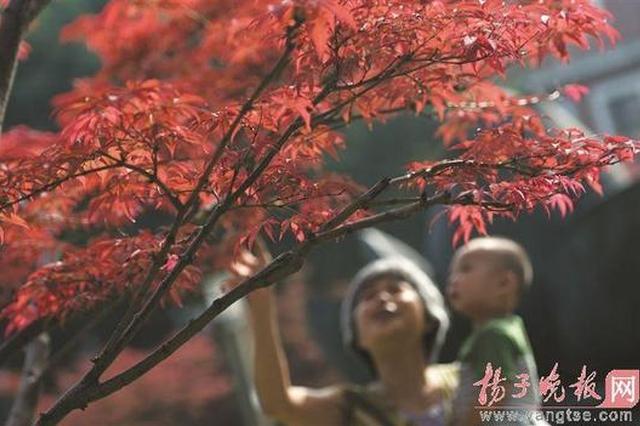 台风泰利旋转跳跃拐弯走了 南京未来三天无明显降雨
