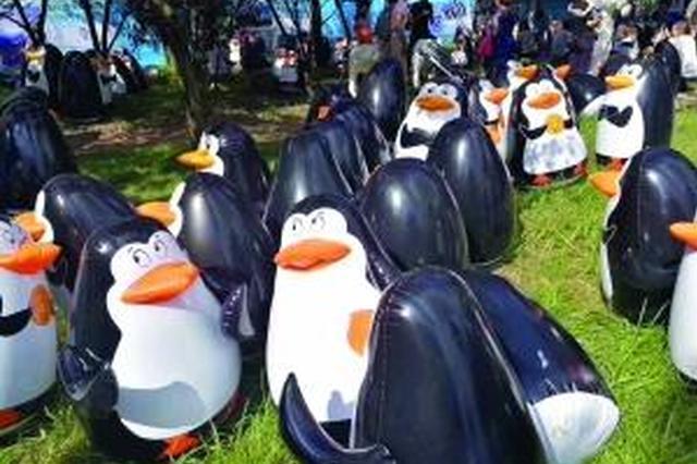 万只企鹅来南通?游客带羽绒服去围观 竟……(图)