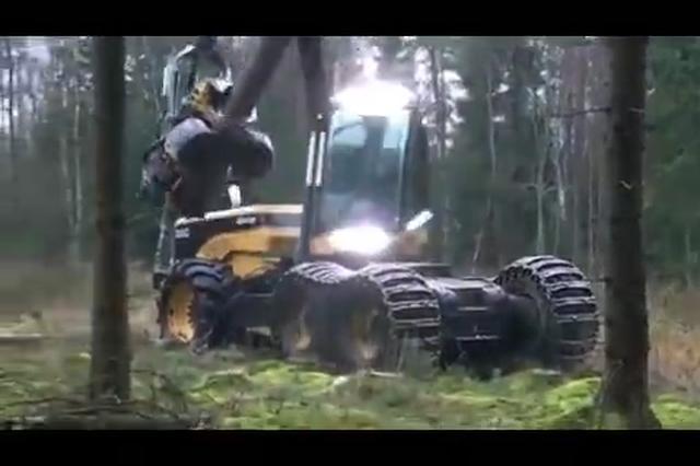 黑科技!德国重机械伐木过程