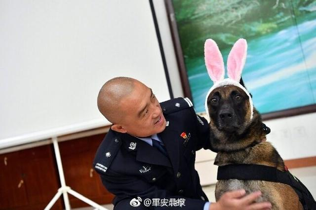 警察蜀黍为警犬过生!谁还不是小公主咋滴!