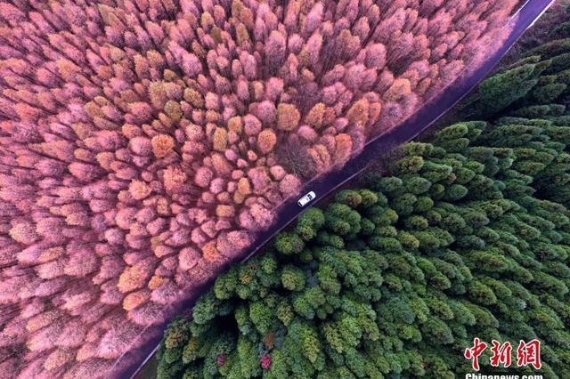 绿水青山就是金山银山 生态文明受重视