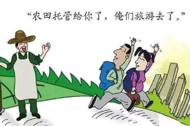 江苏省为农民托管土地446万亩 农民只需付托管费