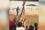 昆明动物园一长颈鹿蹭痒 头卡枝杈死亡