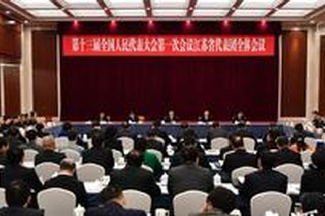 为发展献良策 江苏代表团提交15件议案、351件建议