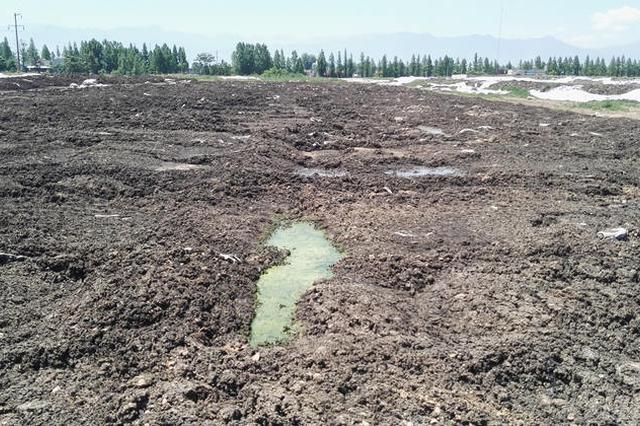 泰兴全力推进滨江污泥整改 4台污泥处置设备已安装