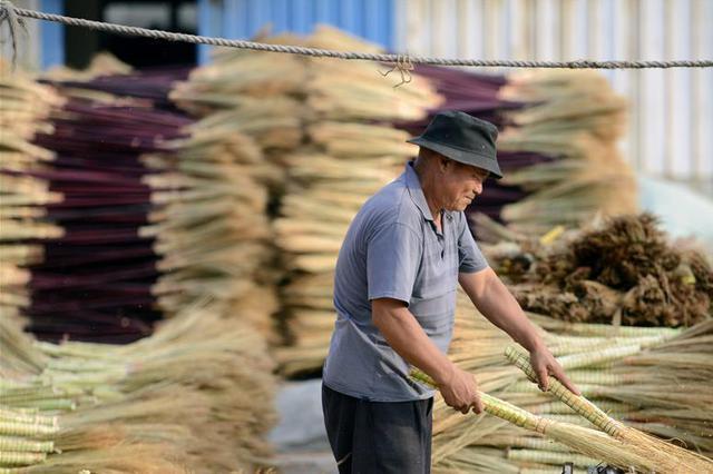 """""""中国农民丰收节"""" 定在每年农历秋分"""