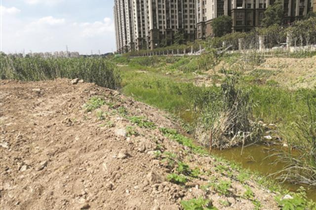 烟斗湖都快被填平了 说好的湿地公园咋还没来?