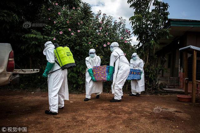 农业农村部:非洲猪瘟不会感染人 正规渠道猪肉可以放心吃