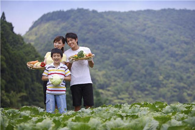 江苏4万多个家庭农场前景喜人 农村真的越来越值钱