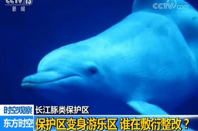 江苏长江豚类保护区敷衍整改 镇江市市长被约谈