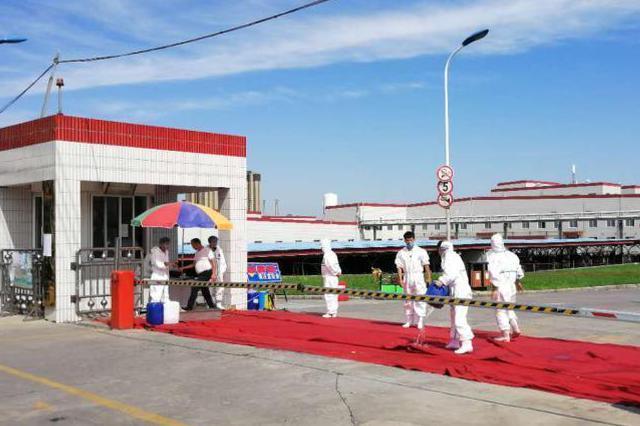哈尔滨排查非洲猪瘟疫情:发病269头 死亡269头