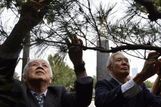 为南京大屠杀真相奔走40年的旅日华侨:坚持为遇难者发声