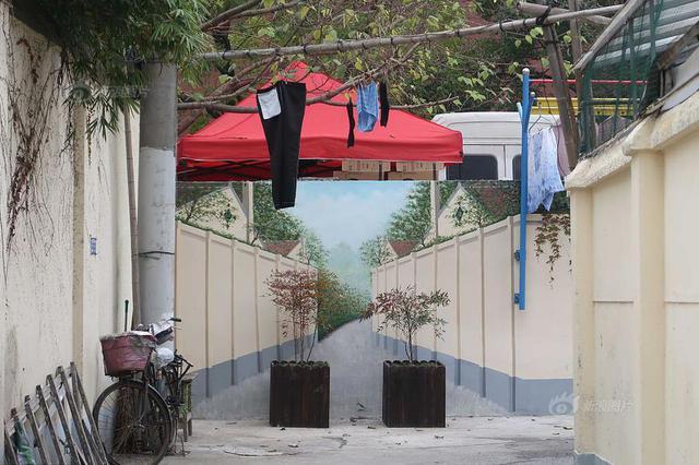 """""""网红""""弄堂墙绘以假乱真 街道放置绿植提醒"""