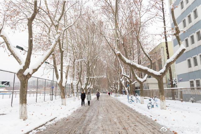 2019年第一场雪独宠南京 失联多日的太阳即将回归