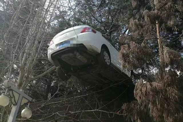 """手刹没拉车子""""溜""""出1公里 车主以为车被偷报警"""