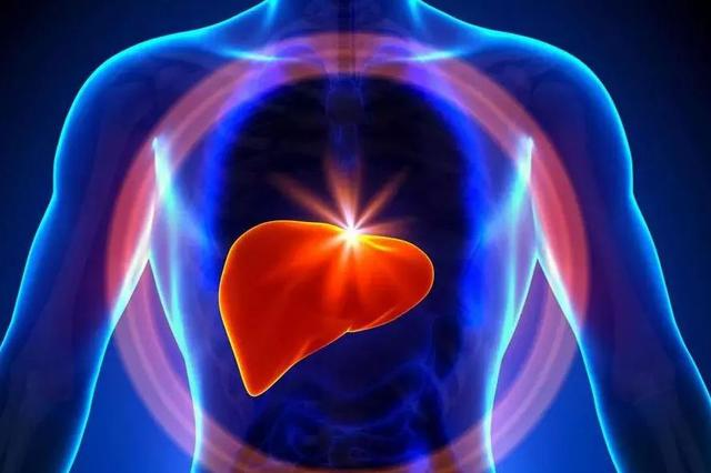 """""""全国爱肝日""""专家提醒:警惕脂肪肝药物性肝损伤"""