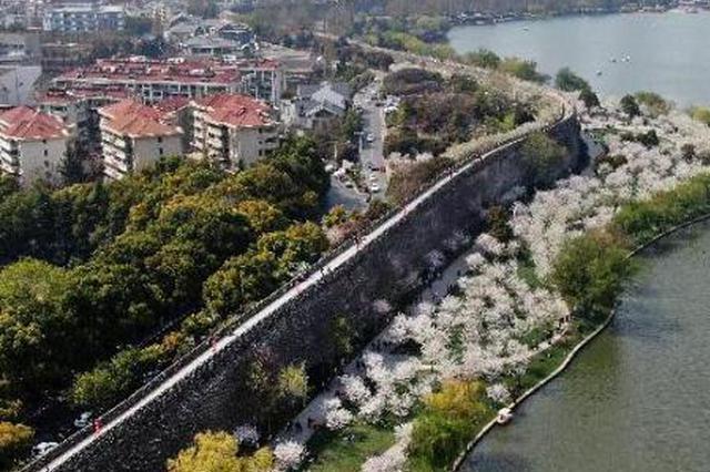 """环城墙绕山林滨长江 南京""""绿道""""串起江南最美四季"""