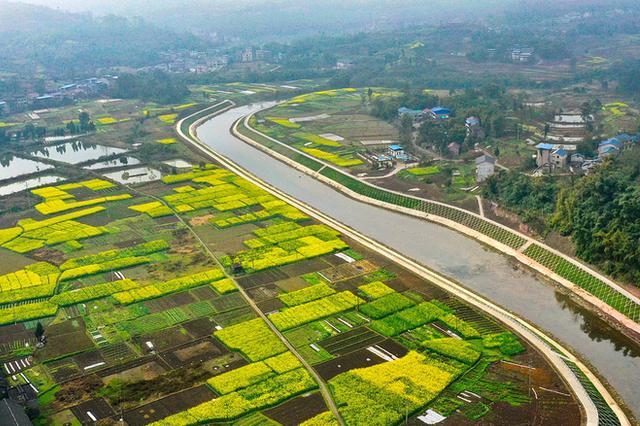 江苏新建330万亩农田 发展高效节水灌溉面积41万亩