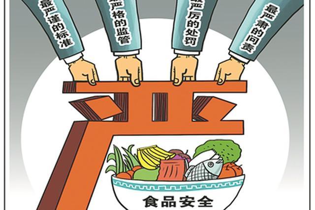 危害食品安全的制假售假直接入刑 国务院负责人答记者问