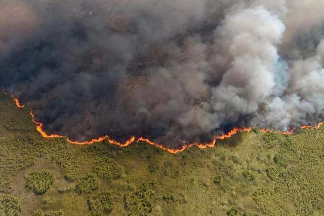 墨西哥一生物圈保护区发生火灾 浓烟滚滚