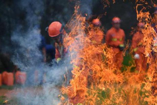 云南森林消防员大比武 锤炼烈火雄心
