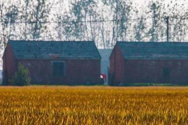 江苏改善苏北农民住房 规划中一些共性问题需重视