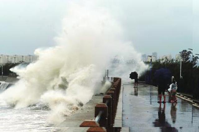 8月11日,山东青岛沿海掀起大浪。 新华社照片