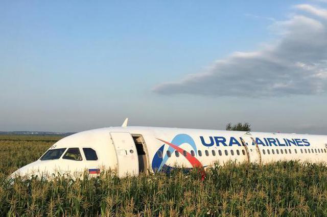 俄罗斯一客机发动机被鸟击中紧急迫降 10人受伤